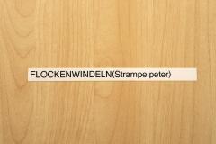 33_Alte_Hautklinik_20110831nr062a_www
