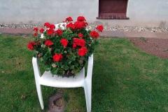 005_mr_bunt_20071016nr37a_www