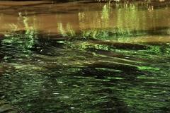 09_Fluss_Lahn_20100613nr038a_www