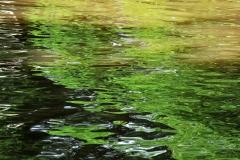 11_Fluss_Lahn_20100613nr040a_www