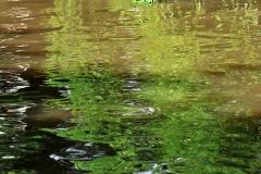 12_Fluss_Lahn_20100613nr043a_www